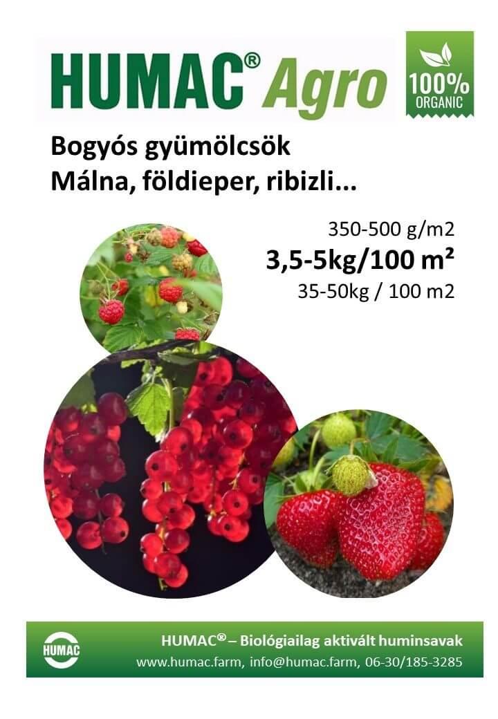 Humac Agro bogyós gyümölcsök