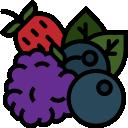 bogyós gyümölcs humac agro